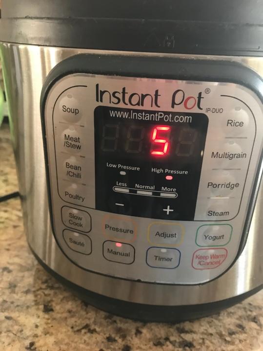 Instant Pot 5 mins Manual